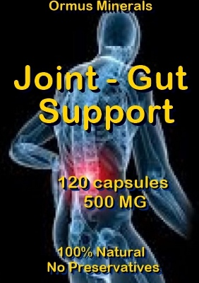 Ormus Minerals -Joint - Gut Support