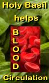Ormus Minerals - Holy Basil HELPS Blood Circulation